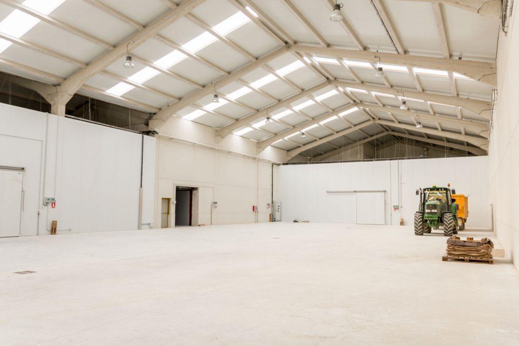 instalaciones de manipulación de planta de vid en Larraga 5