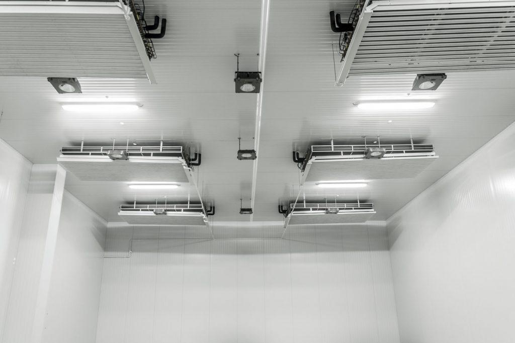 instalaciones de manipulación de planta de vid en Larraga 9