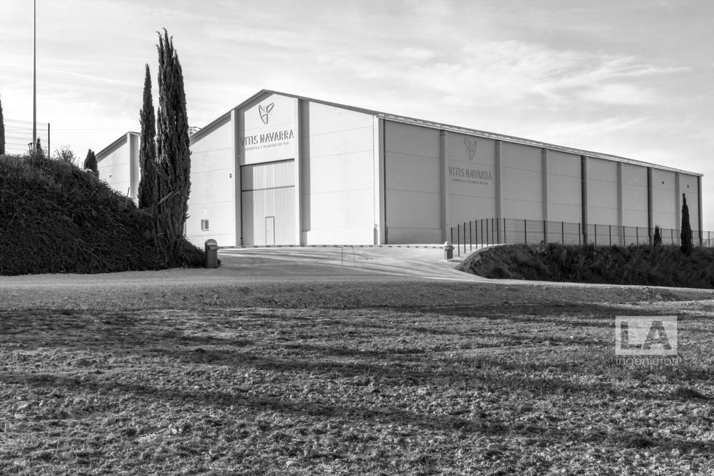 instalaciones de manipulación de planta de vid en Larraga 13