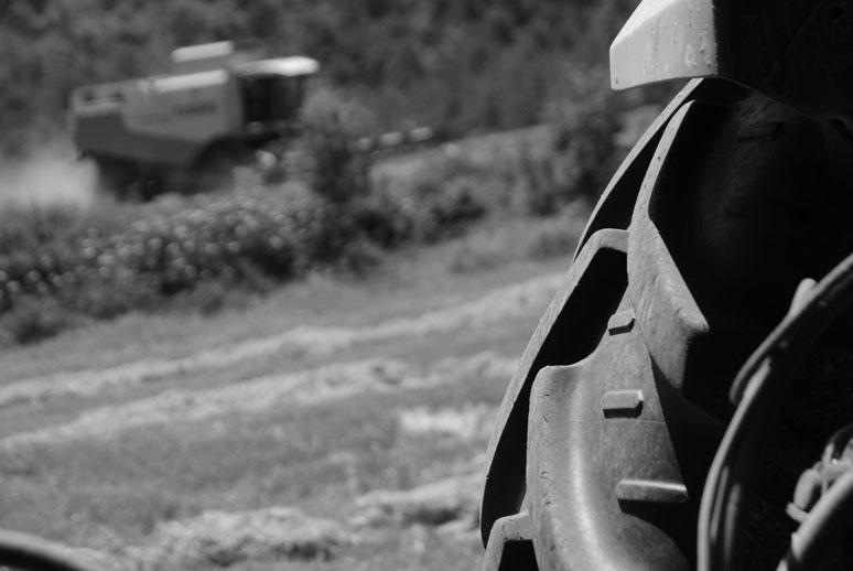 AYUDAS A LA INVERSIÓN EN INDUSTRIAS AGROALIMENTARIAS 2015